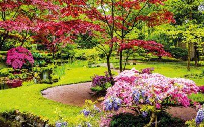 Livres jardin