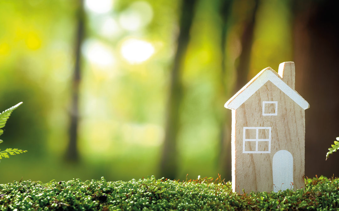 Le siècle vert est entré à la maison!